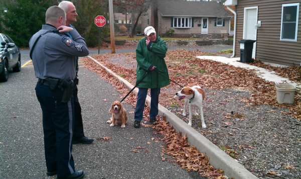 2 lost dogs recovered in Pine Beach
